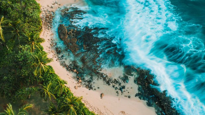 A trip to Oahu taking in the politics, history and music of this Pacific island – Lost and Found