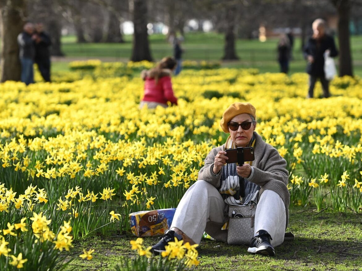 UK weather: This week to feel 'as warm as May'