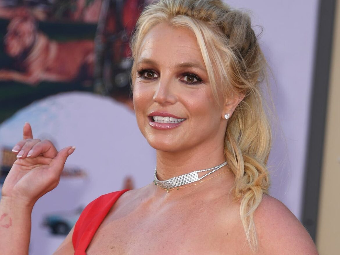 Britney Spears's father loses bid to keep control of delegating pop singer's investments