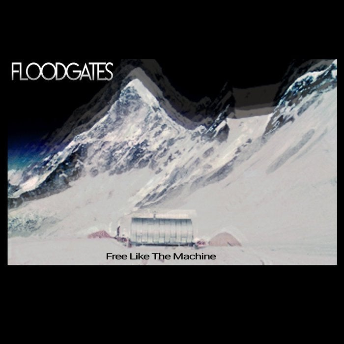 Waltzing To My Grave 2.0, by Flood Gates