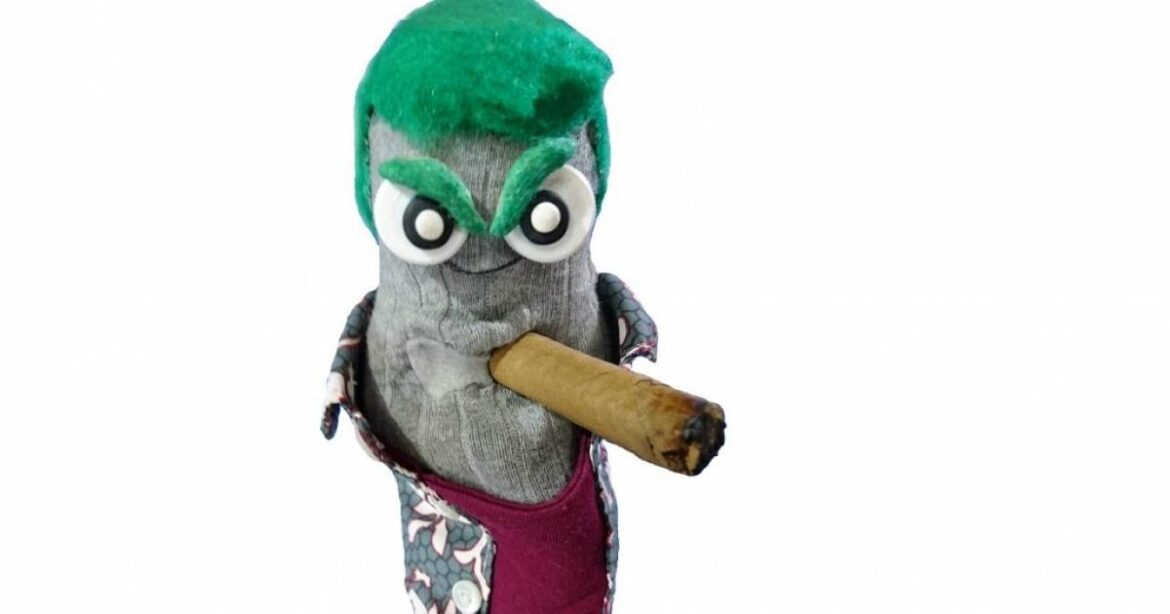 Ed the Sock wants indie musicians to send him their videos