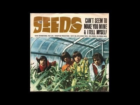 The Seeds – Can't Seem To Make You Mine (1965)